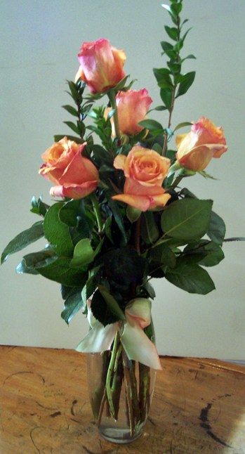 6 Vased Roses